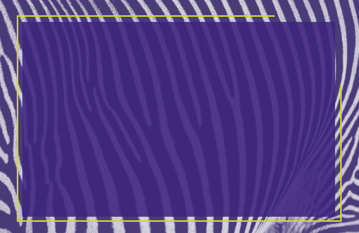 Send a customized eMessage with purple zebra print to someone with Carcinoid Syndrome